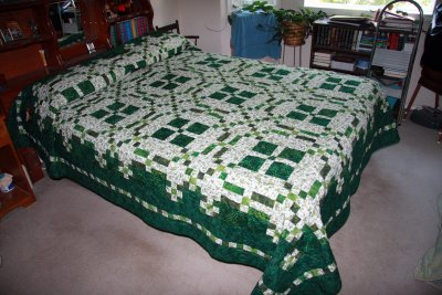 Mom's Quilt - Burgoyne Surrounded - In Quick Classic Quilts by Marsha McCloskey